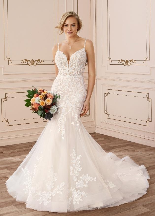 Brides Visited reveal some wedding dresses